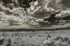 110822_infrared_0022T