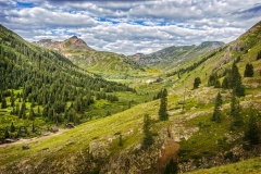 Ouray Mountain