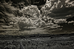 110822_infrared_0021