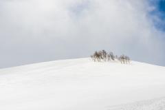 Winter Snow in Boulder
